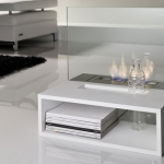 Bio Fireplace - Reflex Cam Şömine